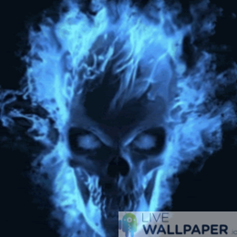 SKull WP Fire Logo